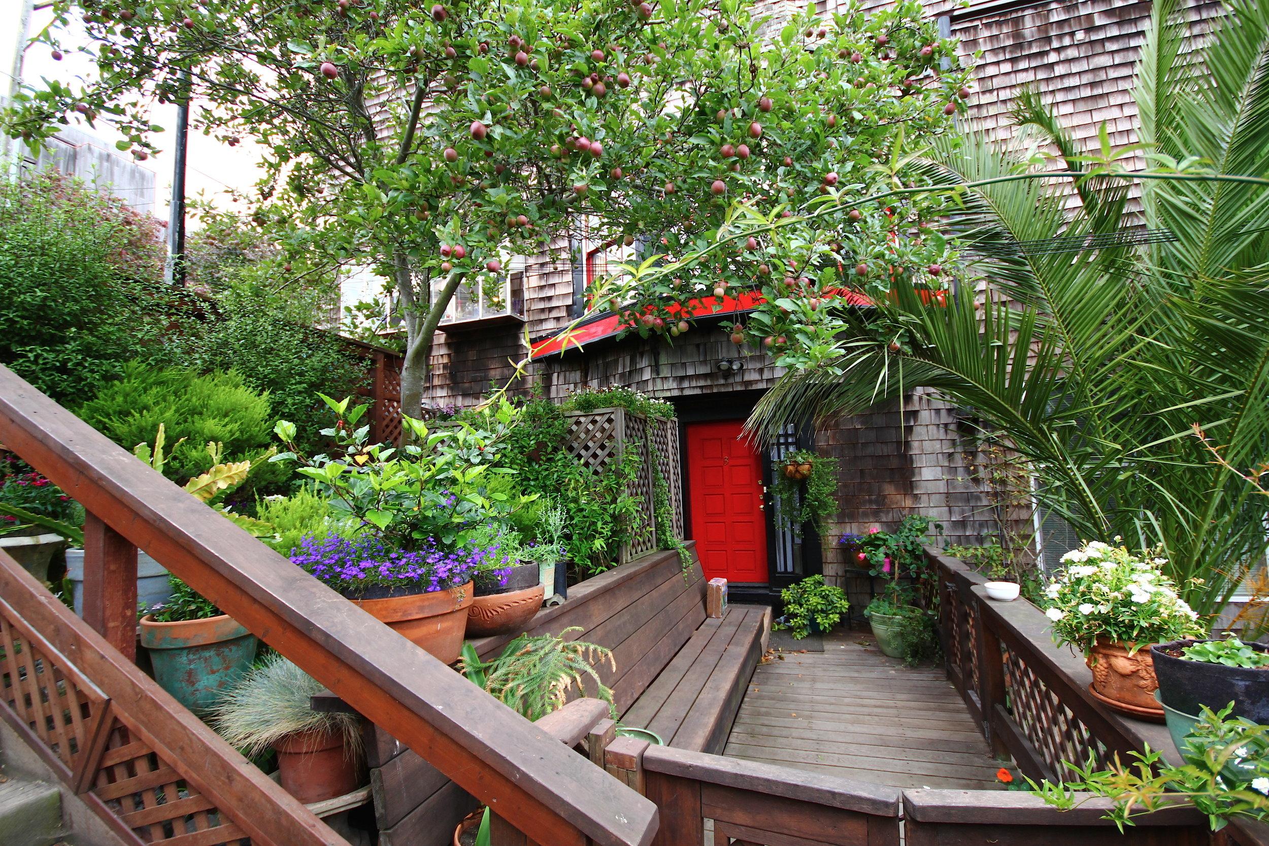 Hidden gems of Bernal Heights -This is straight out of a romance novel!