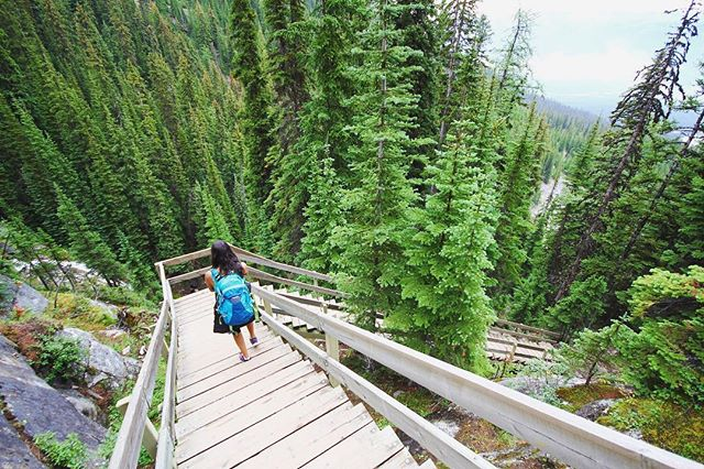 Hiking the Highline Trail at Lake Louise, Canada 🇨🇦