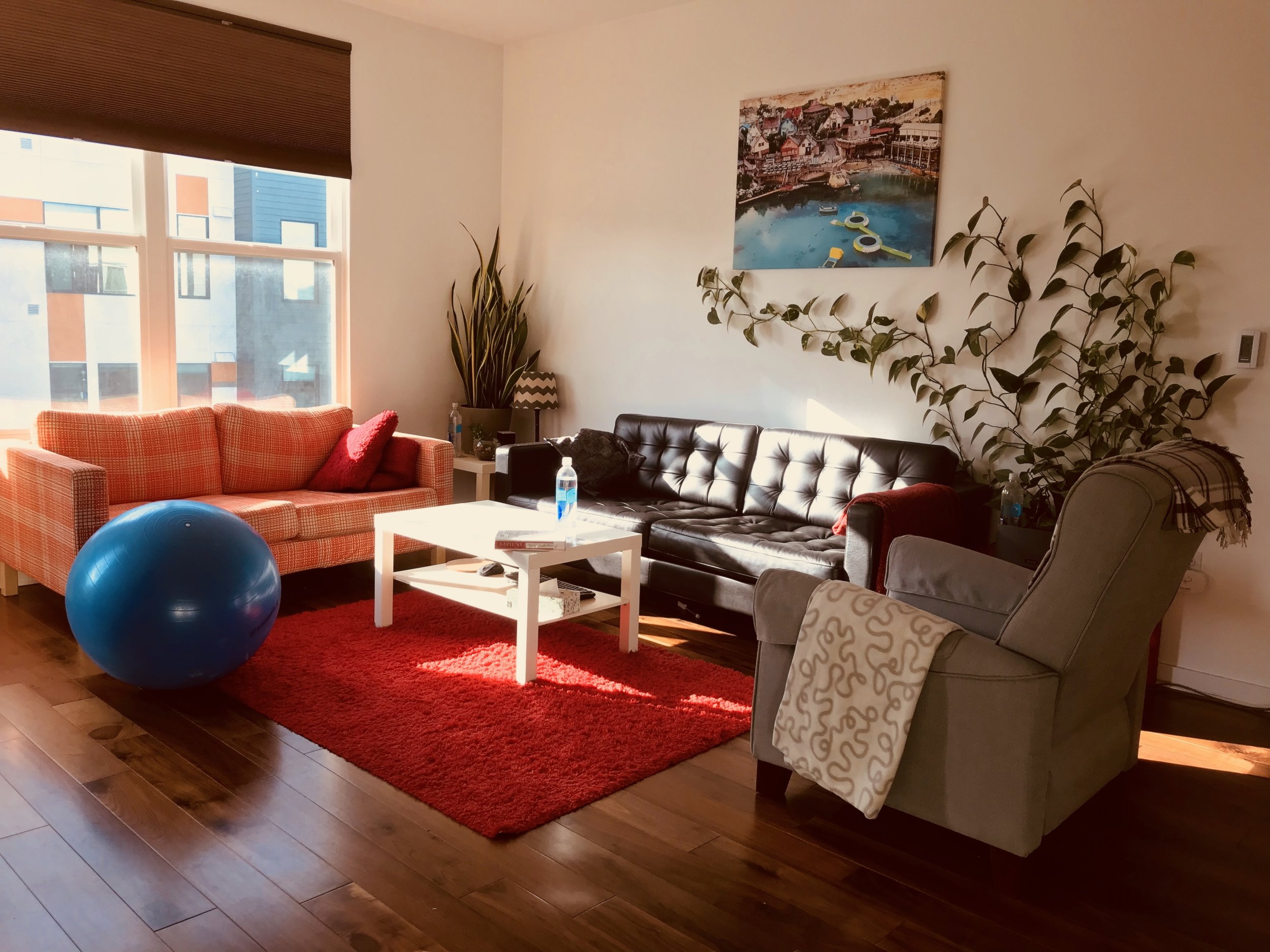 Our current apartment living room in San Francisco, CA - 99% furnished with IKEA products