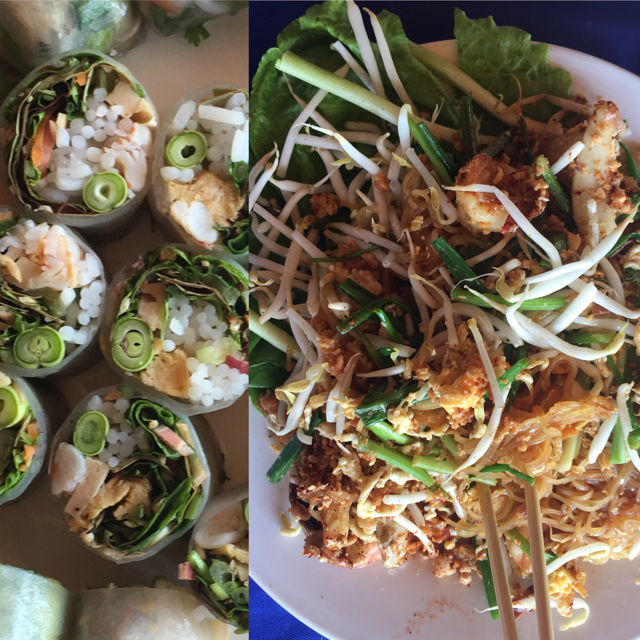 Delicious lunch of Fresh spring rolls and pad Thai
