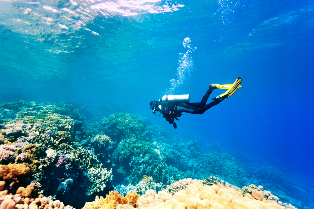 Project Kaif female scuba diving near coral reef
