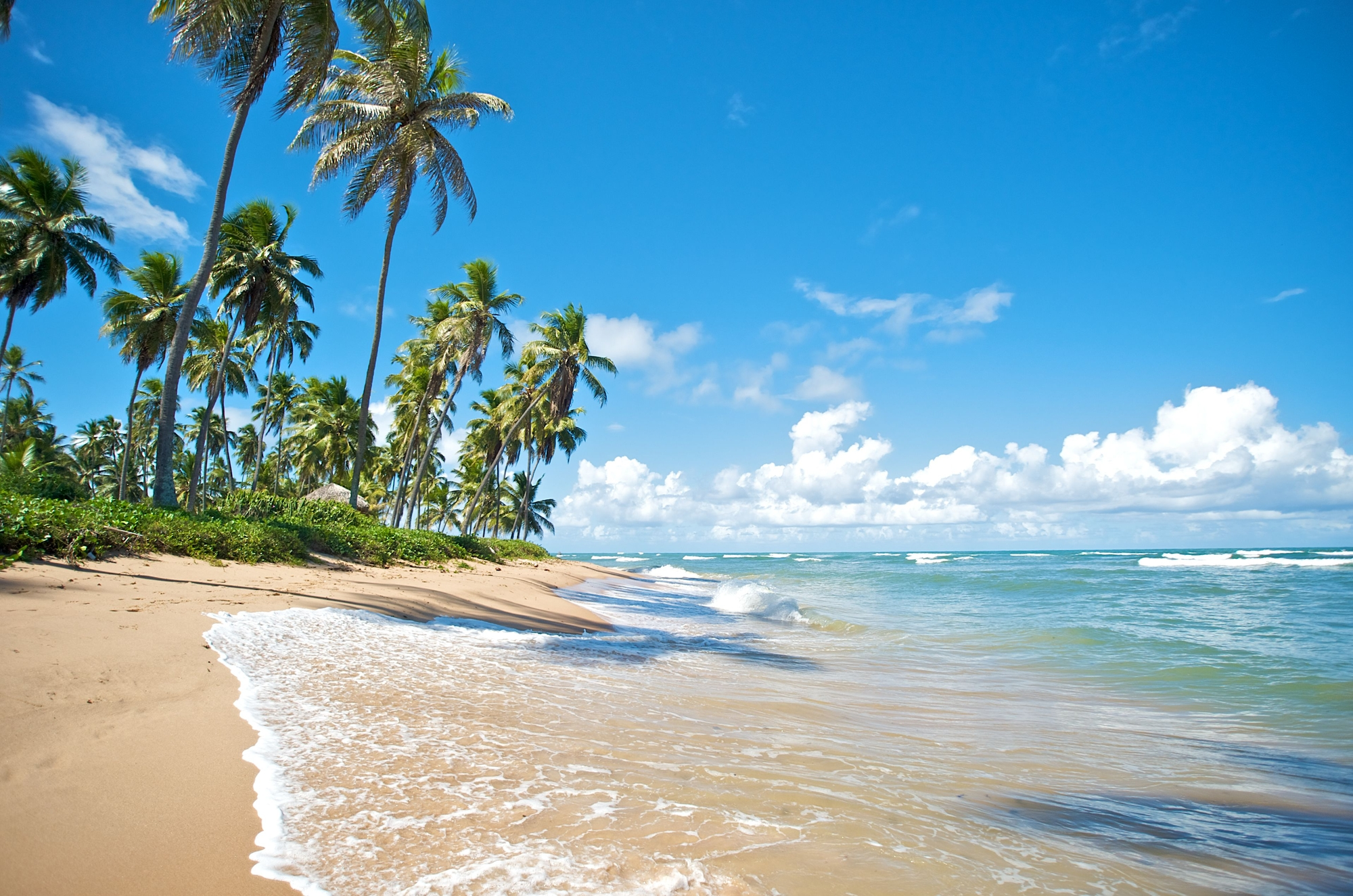 Sure, there are some beaches in Brazil...but they're WAY too crowded.jpg