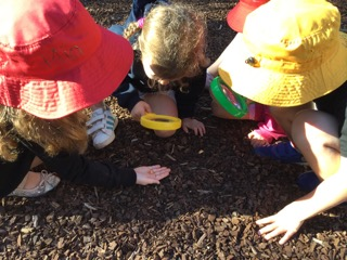 Magnifying Glass Exploration