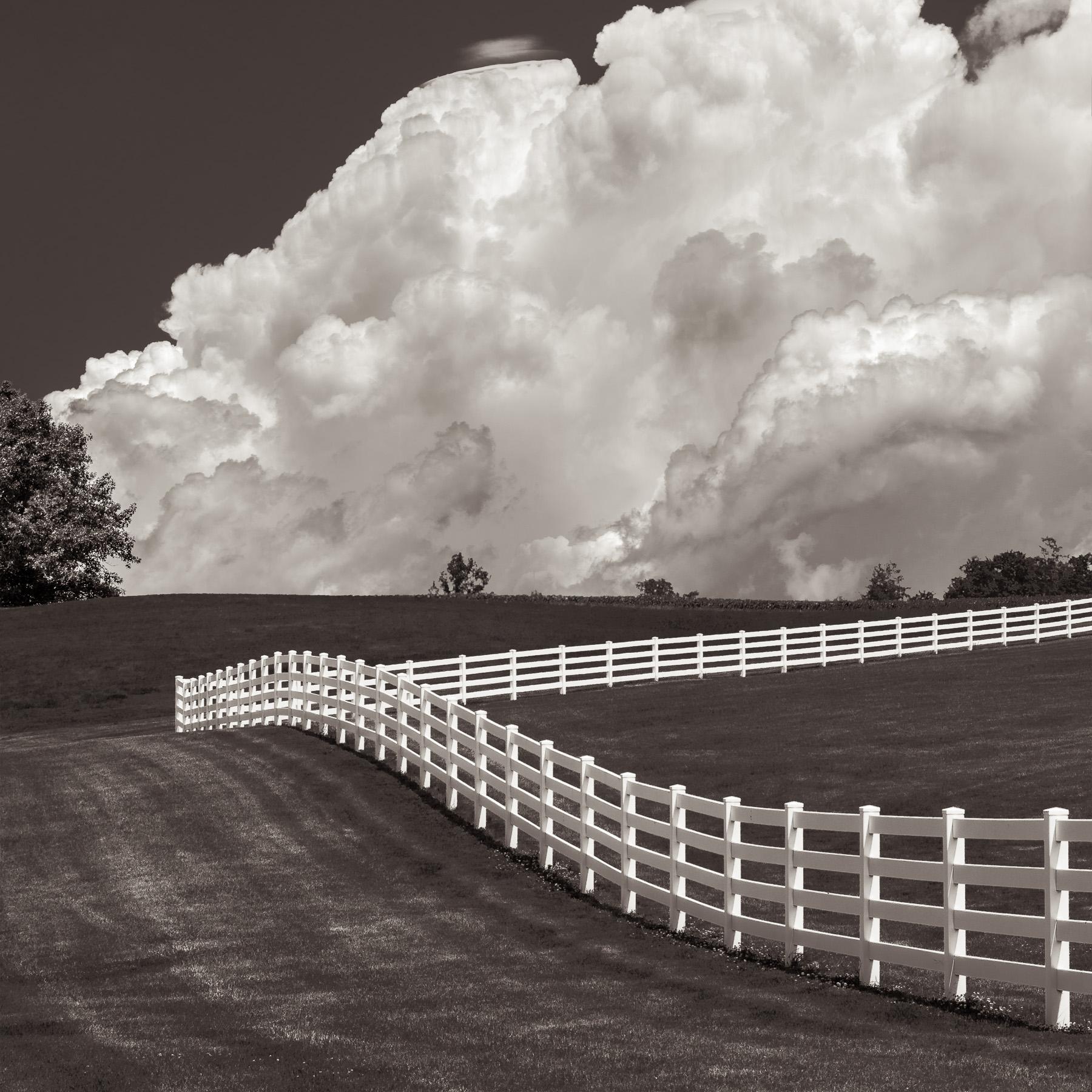 - © Michael Knapstein, 'Fenceline, Midwest Memoir'