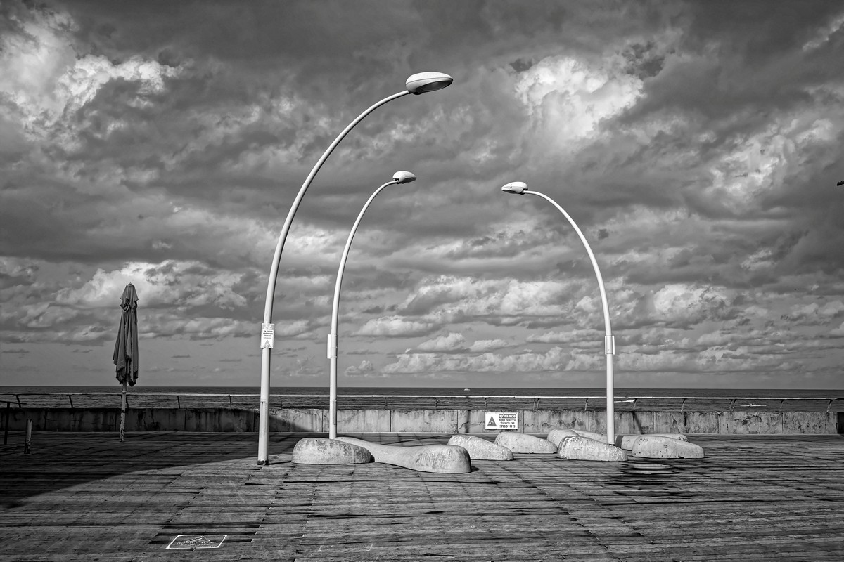 © Haim Blumenblat, Israel, 'Winter Conversation'. Winner of the 2nd Charles Dodgson Black & White Award
