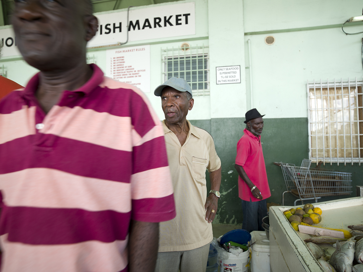 Janice Levy_My Antigua_Fish Market.jpg