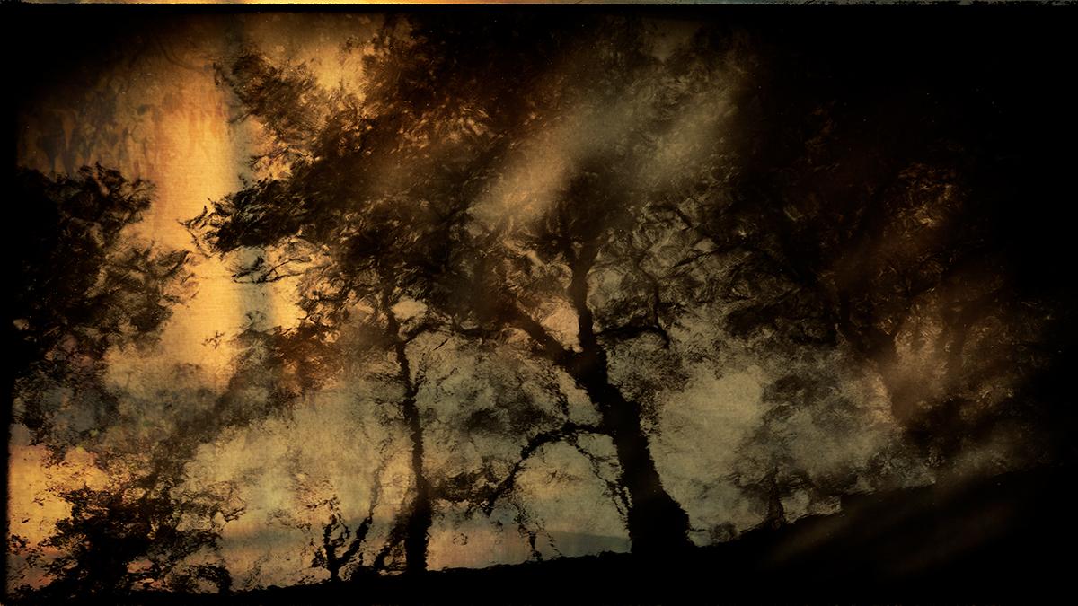 Karen Kirkpatrick_Before Dawn 16.jpg