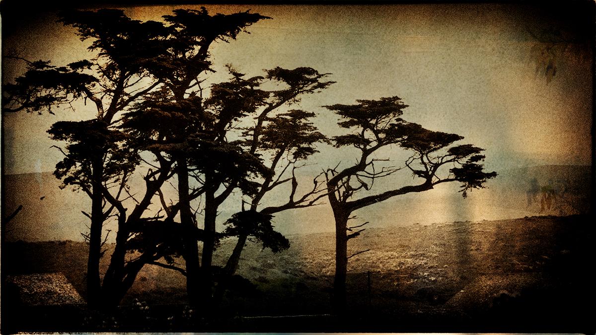Karen Kirkpatrick_Before Dawn 27.jpg