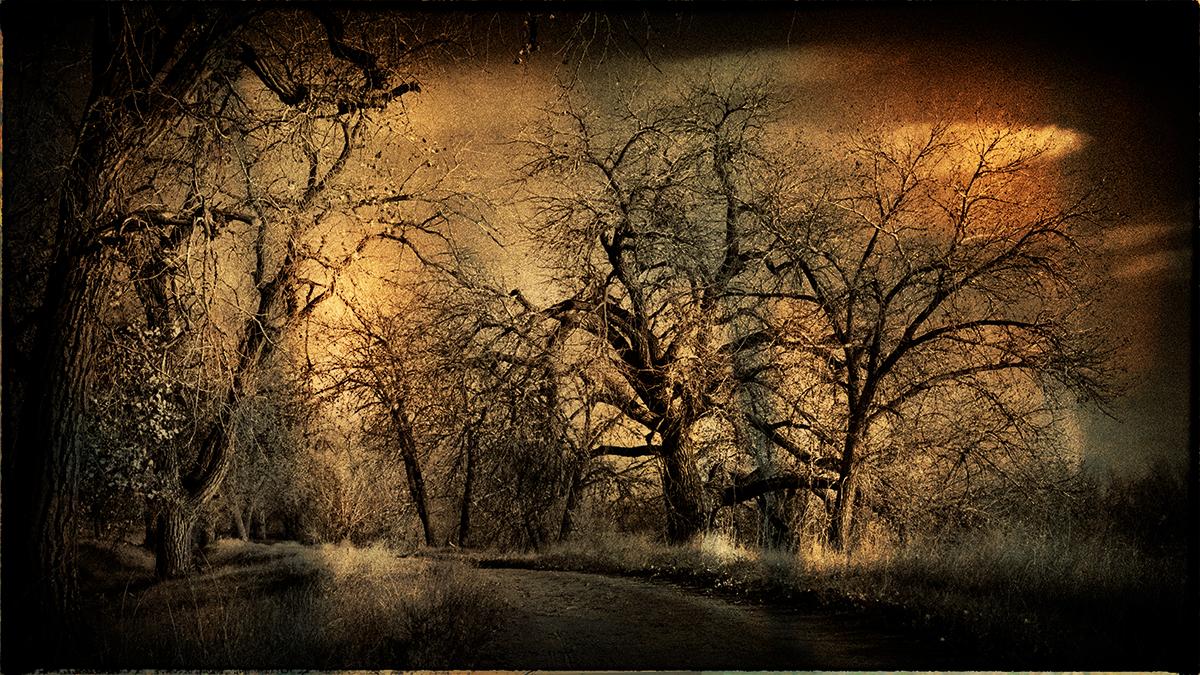 Karen Kirkptrick_Before Dawn 11.jpg