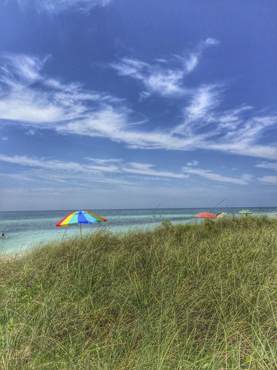Carolyn Knorr_Postcards from the Beach_Umbrellas.jpg