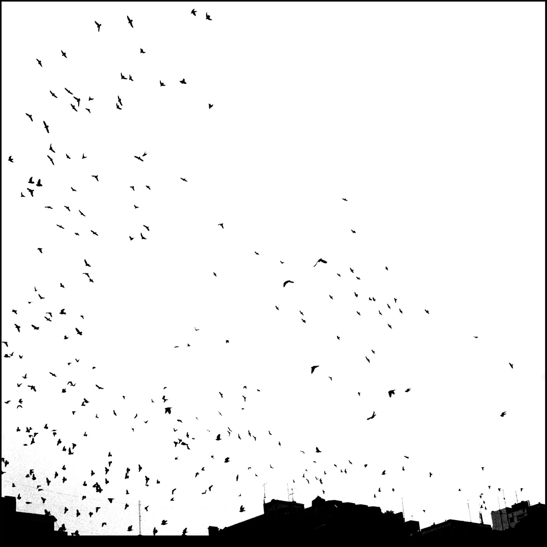 Merethe WesselBerg - Series White Winter _ Untitled 3.jpg.jpg