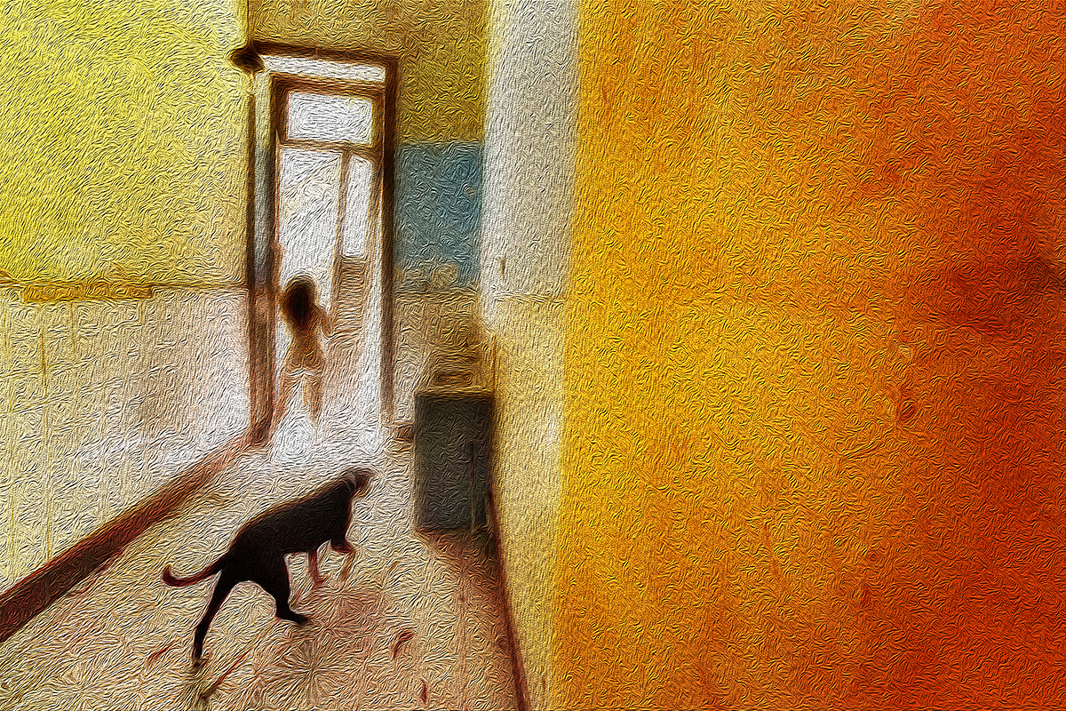 RobertoSoares-Gomes_SilkySkins&RoughWalls-01.jpg