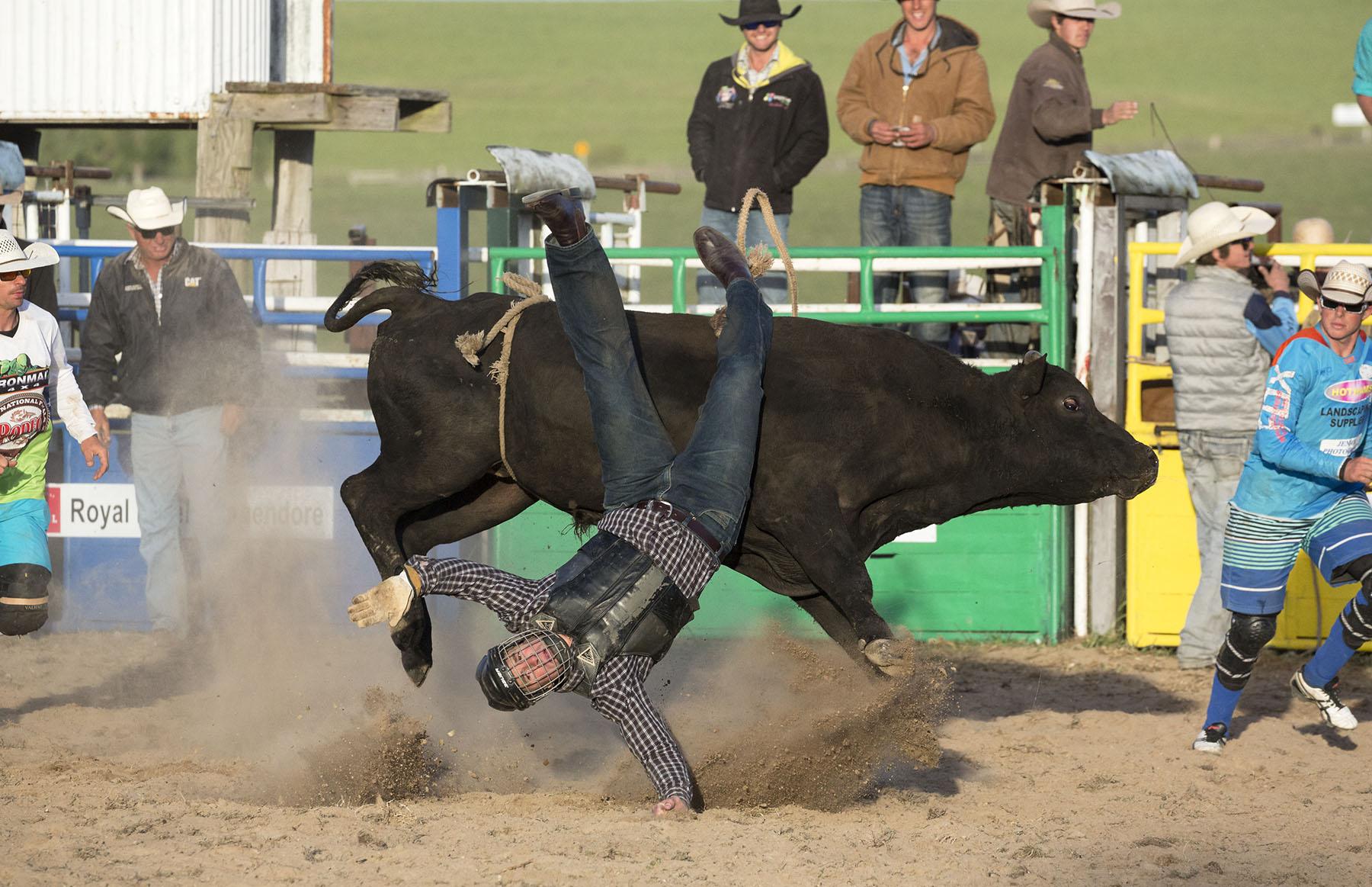 BrianJones_Rodeo Bull Riding_Bull Riding 3.jpg