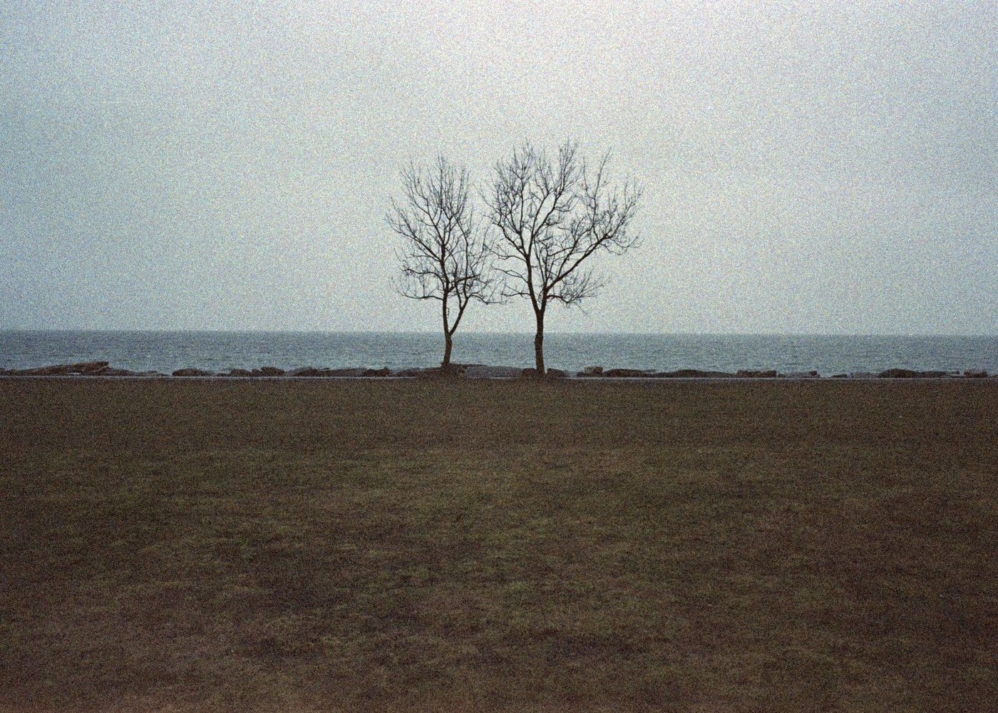 © Ilya Trofimenko, 'Rügen 01'