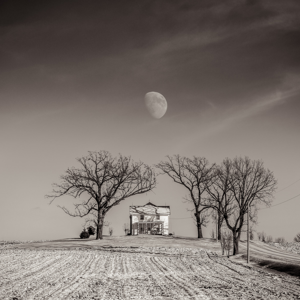 MichaelKnapstein_Winter_WinterMoon.jpg