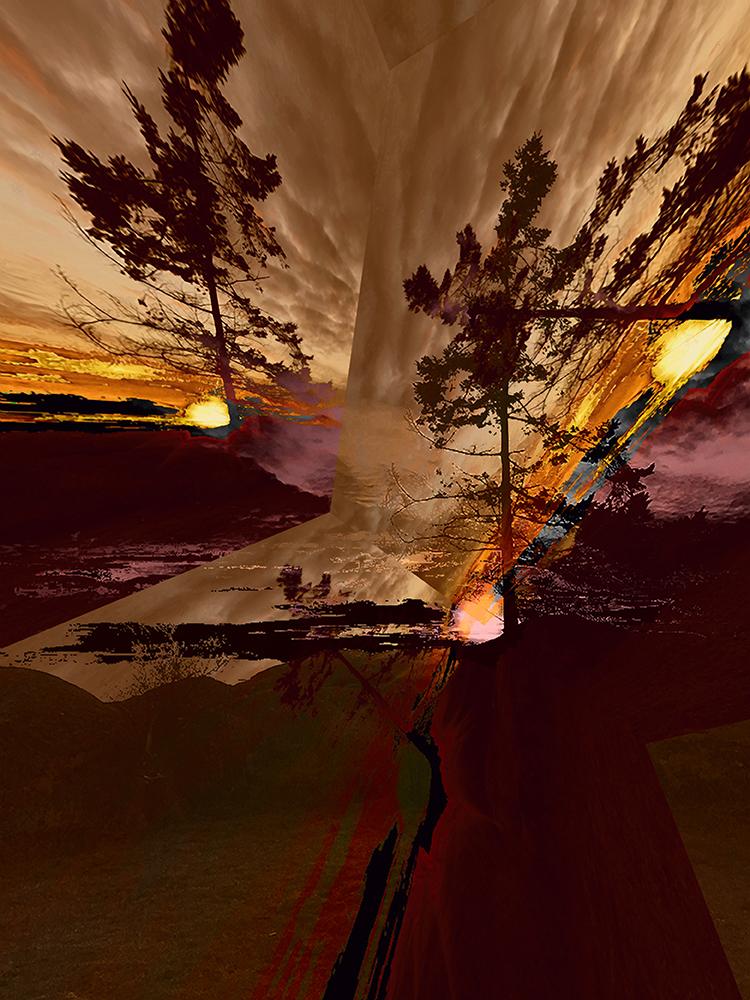 Elaine_Hunter_Sechelt Tree_ sechelt tree 1.jpg