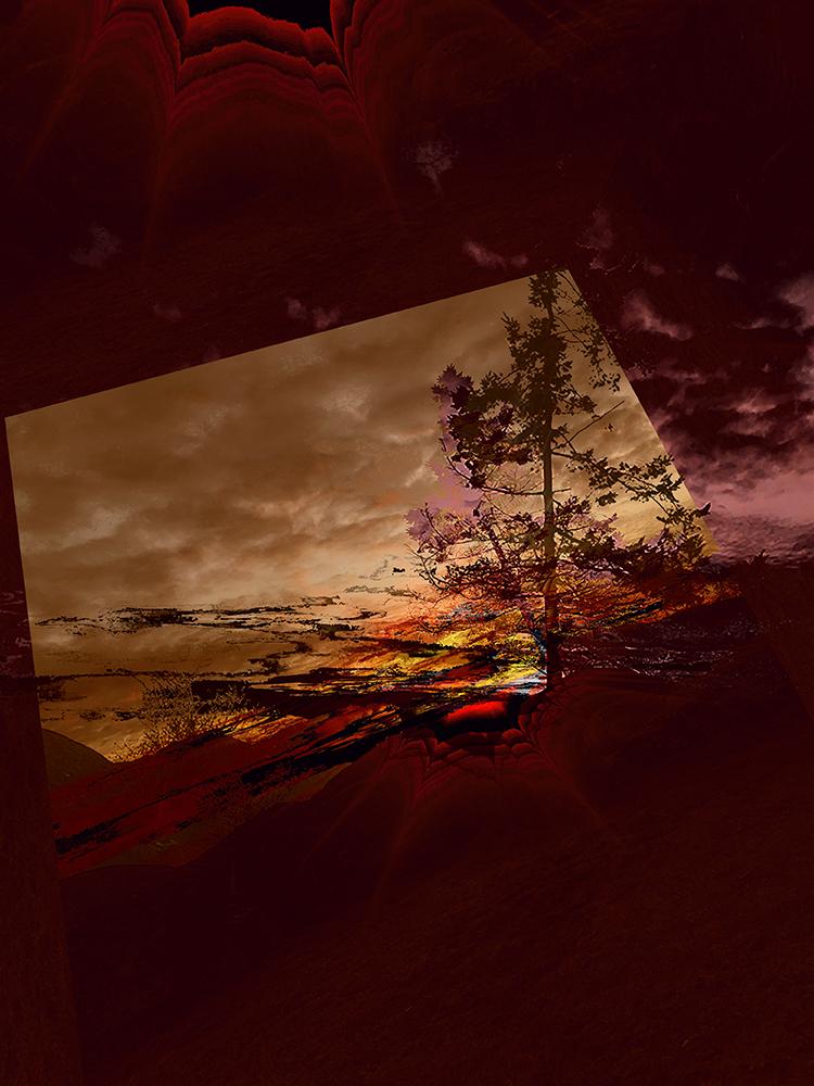 Elaine_Hunter_Sechelt Tree_sechelt tree 3.jpg