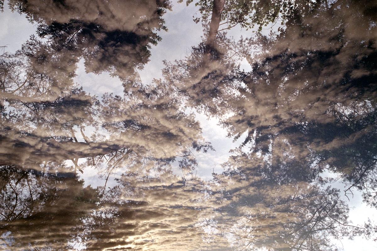 Ilya Trofimenko_Morning sky.jpg