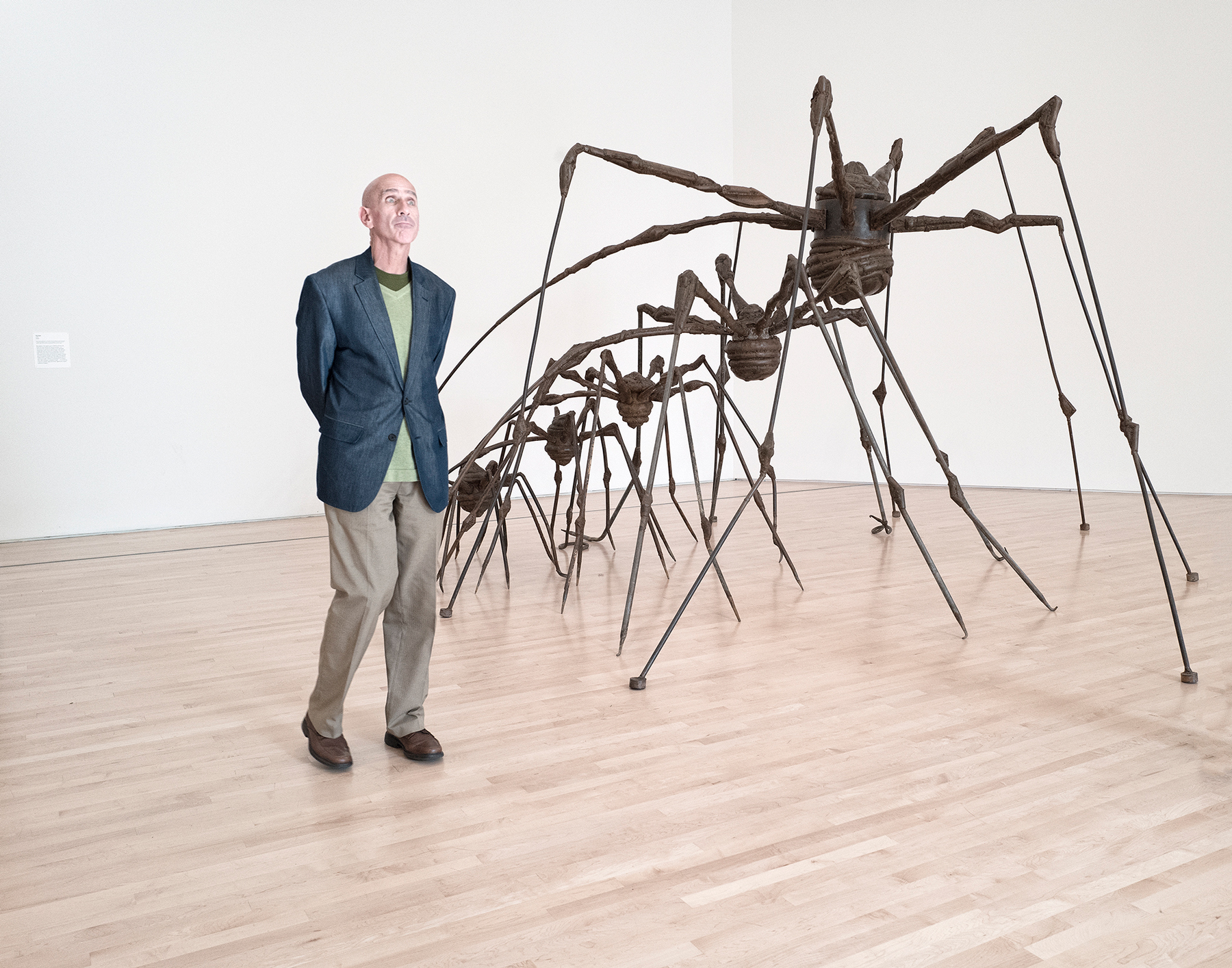 William-Bullard_Pictures-at-an-Exhibition1_Louise-Bourgeois.jpg
