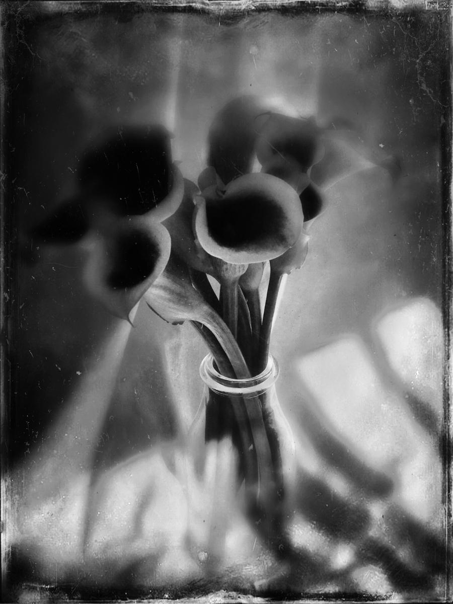 YuliaNaganova_Emptiness.jpg