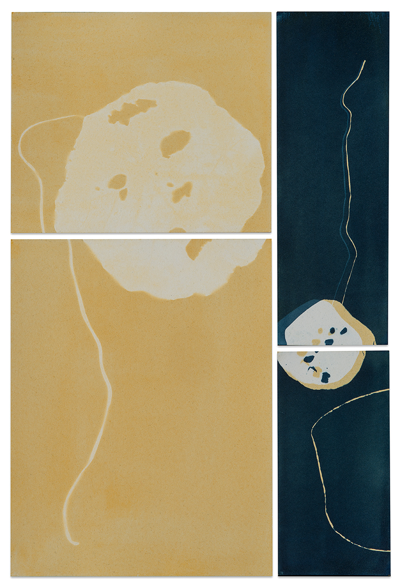 Paula Riff_Conversations with Paper and Paint_Homage to Yellow and Blue.jpg