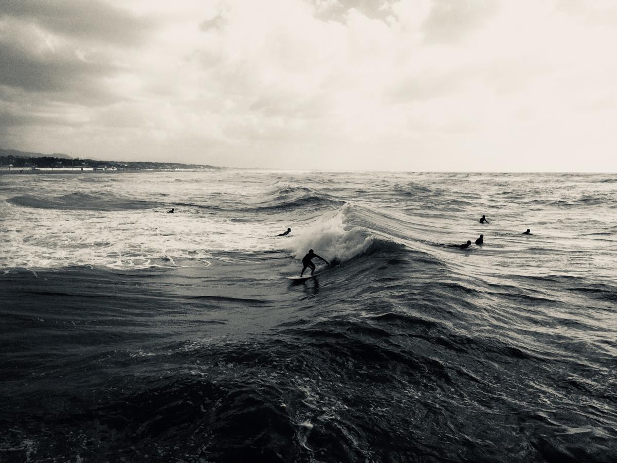 Monica Gorini_Cellphone_Surfing.jpg