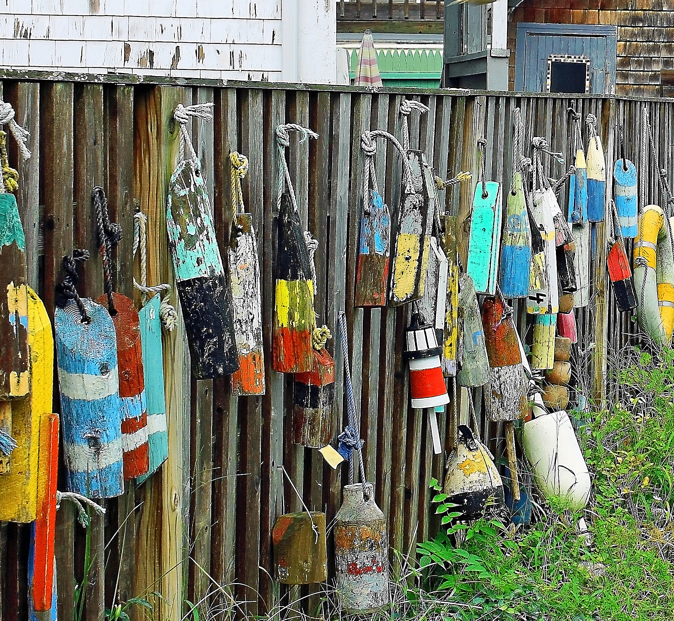Janice Edelman_Backyard Buoys.jpg