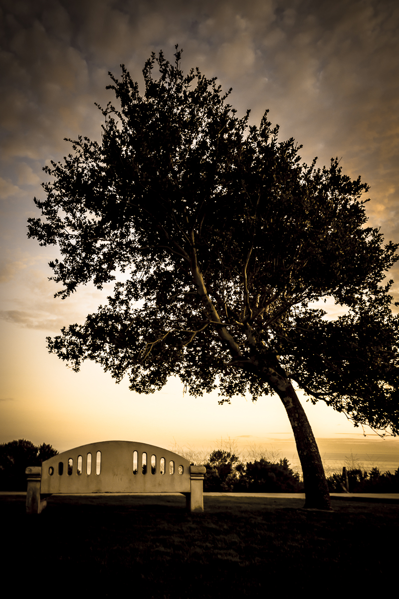 Roma Donovan_Peaceful Overlook.jpg