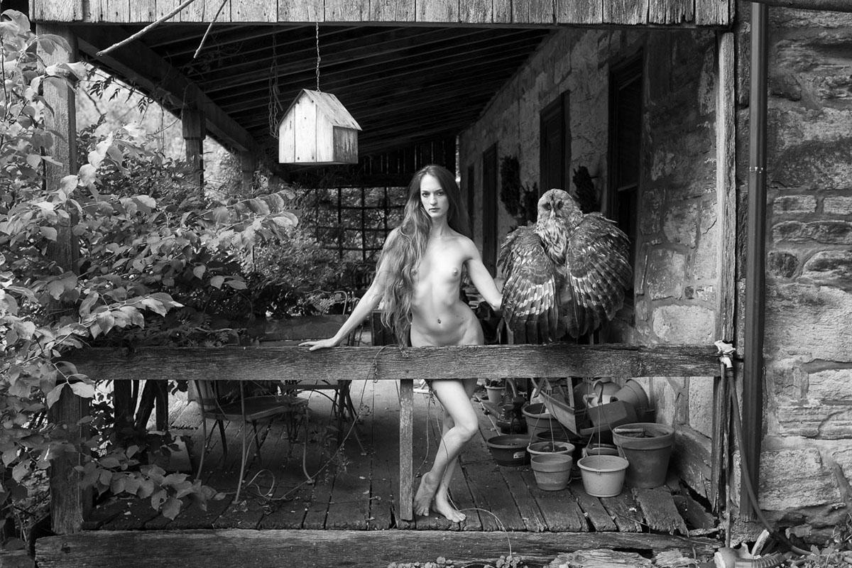 Linda Hollinger_Rose With Owl.jpg