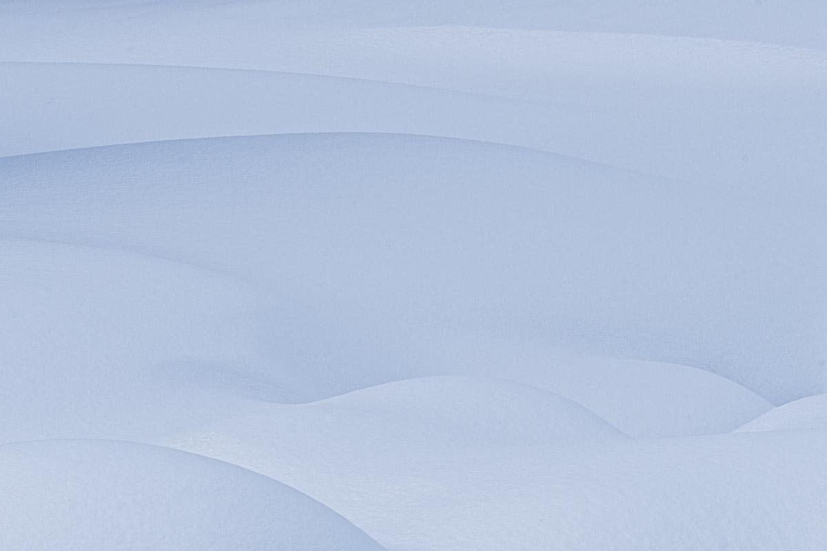 Susan Onysko_Winter Curves_.jpg