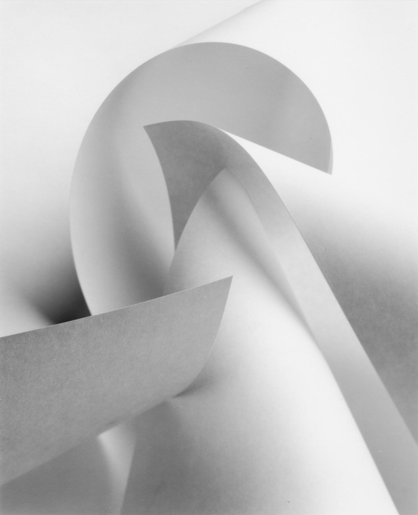 51_Anne_Larsen_Paper_Form_1.jpg