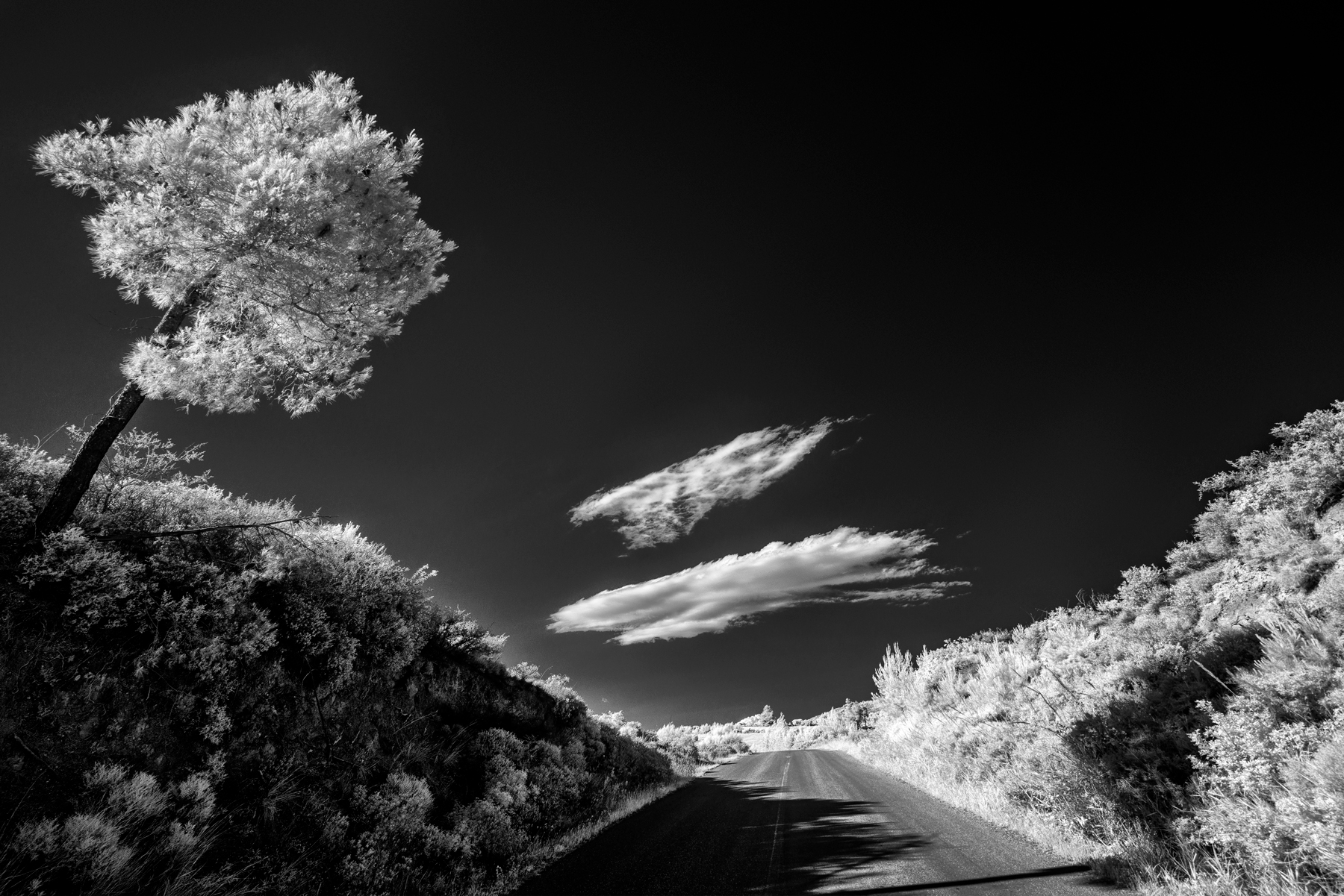 Pepe_Pax_The Road to Chaniotis.jpg