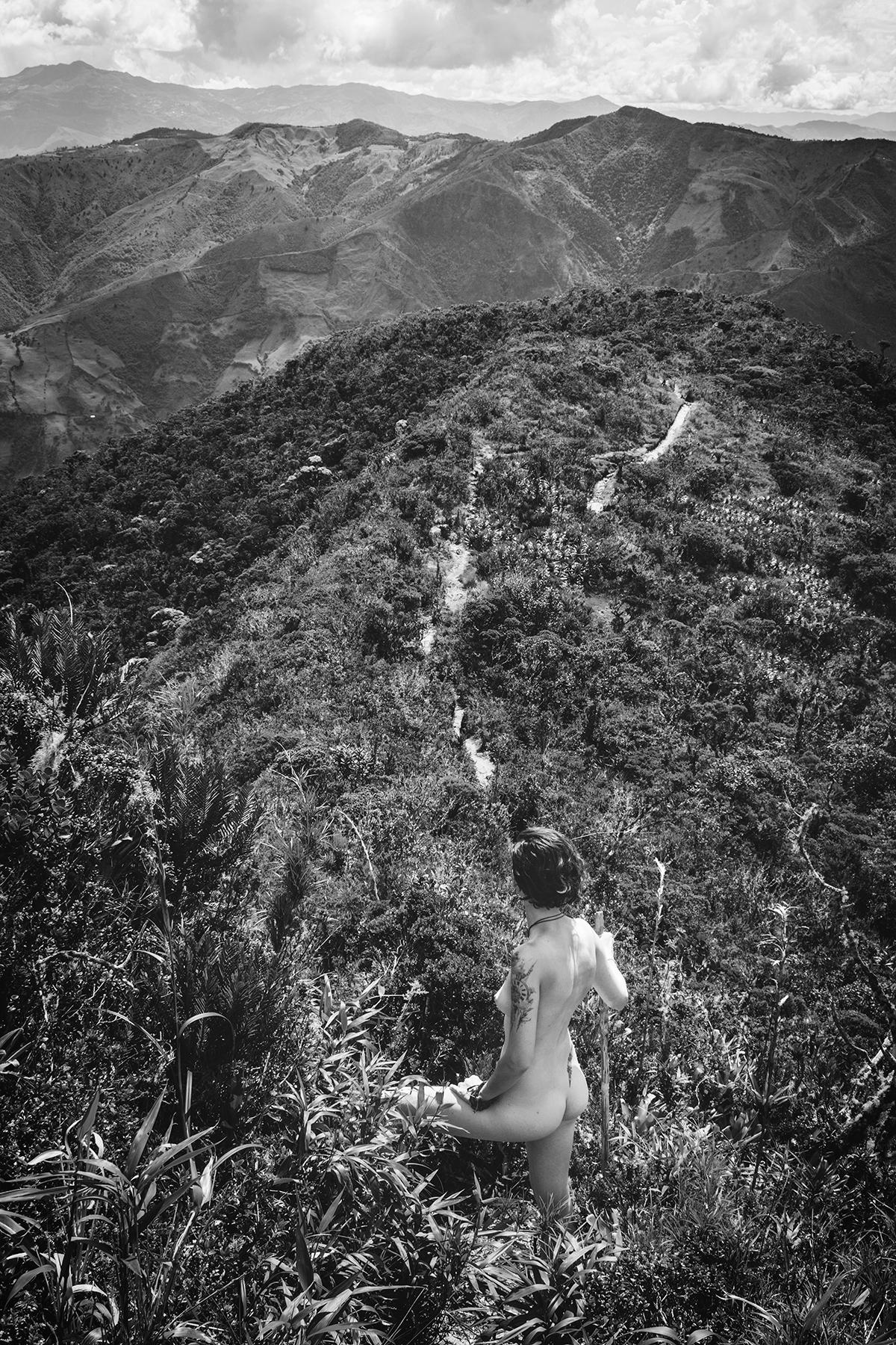 Celine_Fernbach_InTheWild_Podocarpus-Ecuador_04.jpg