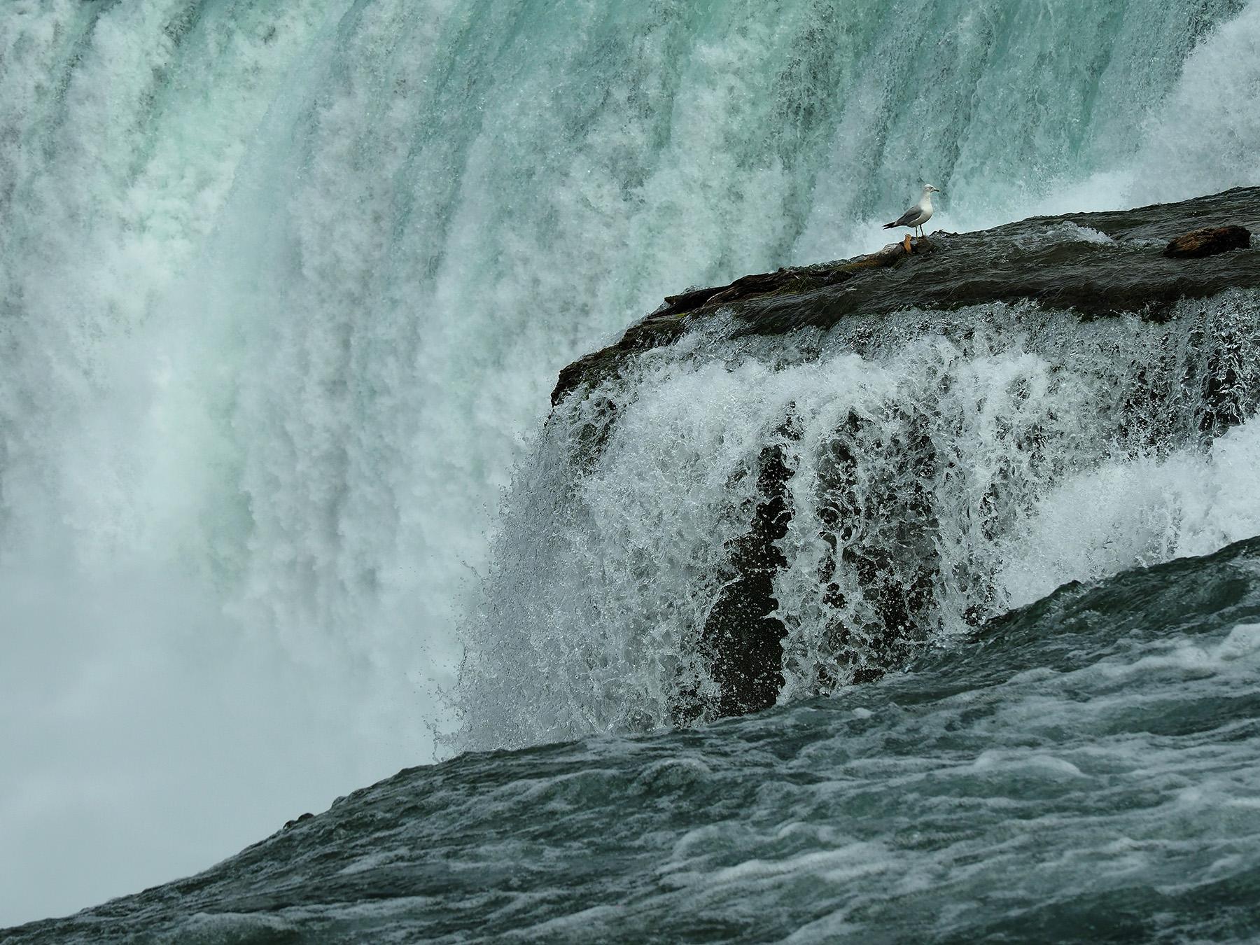 Ranjan_Ramchandani_A birs eye view of Niagara falls.jpg