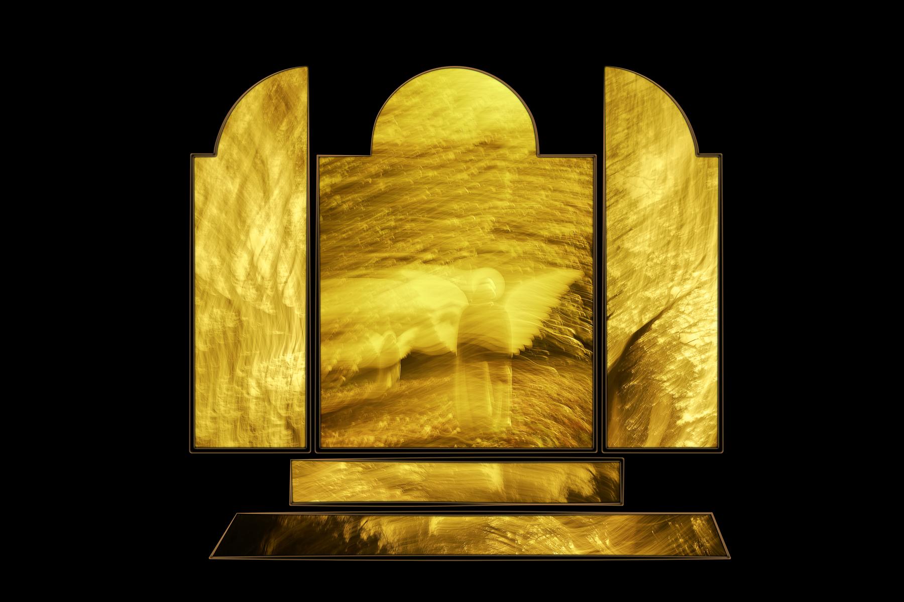 Danie_Munteanu_Polyptych Compositions_Angel Wings_4.jpg