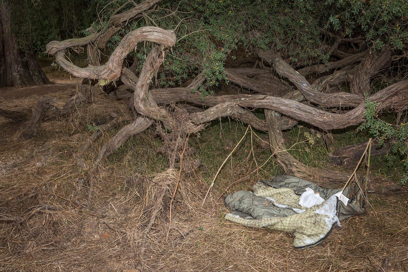 CeciliaBorgenstam_US_HereNotHere_TreeDeadGrassSleepingBag_12.jpg