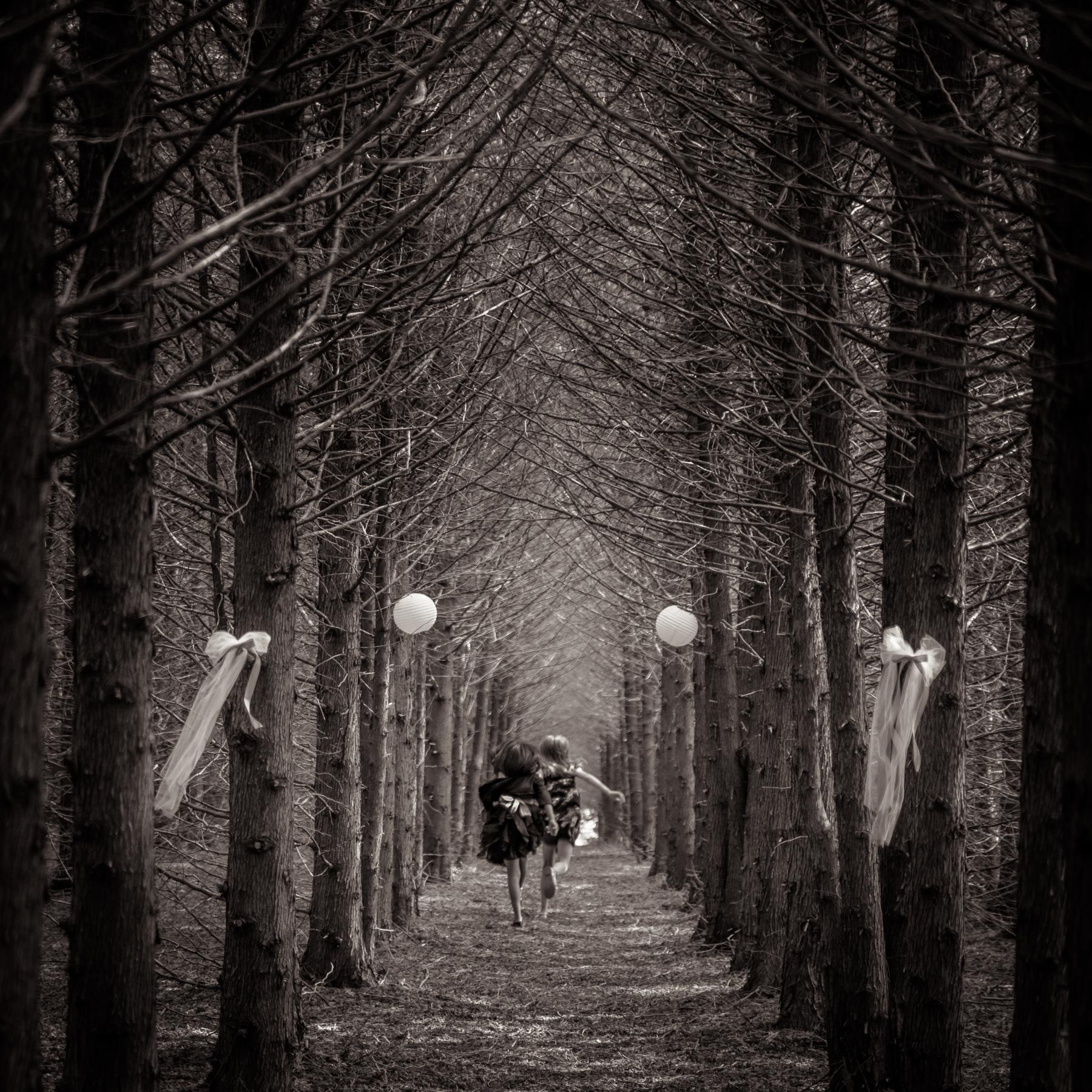 Michael_Knapstein_MidwestPeople_EnchantedForest_6.jpg