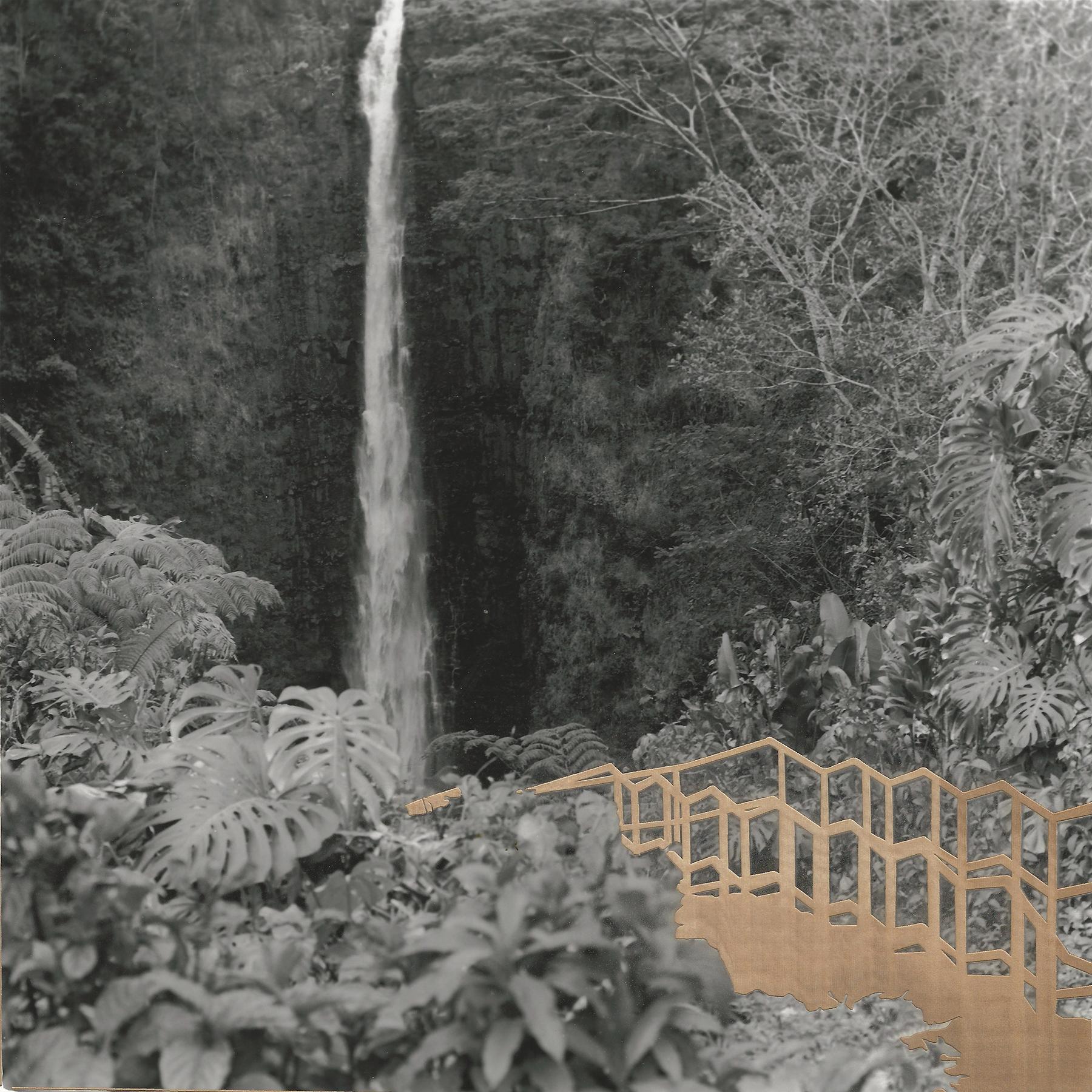 Leah_ Schretenthaler_The Built Environment_The Real Hike To Akaka Falls_2.jpeg
