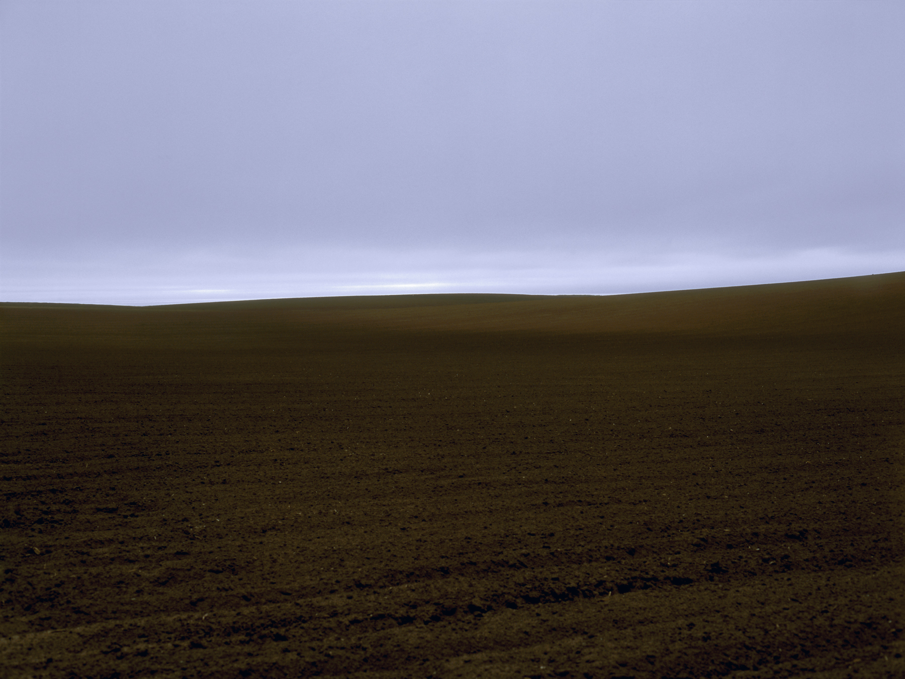 James_Cooper_Agricultural Fields_Field 3_4.jpg