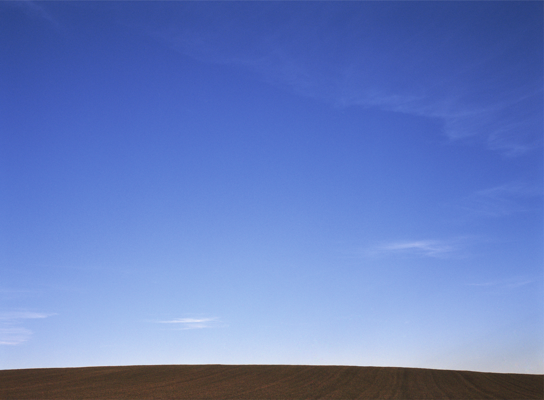 James_Cooper_Agricultural Fields_Field 12_2.jpg