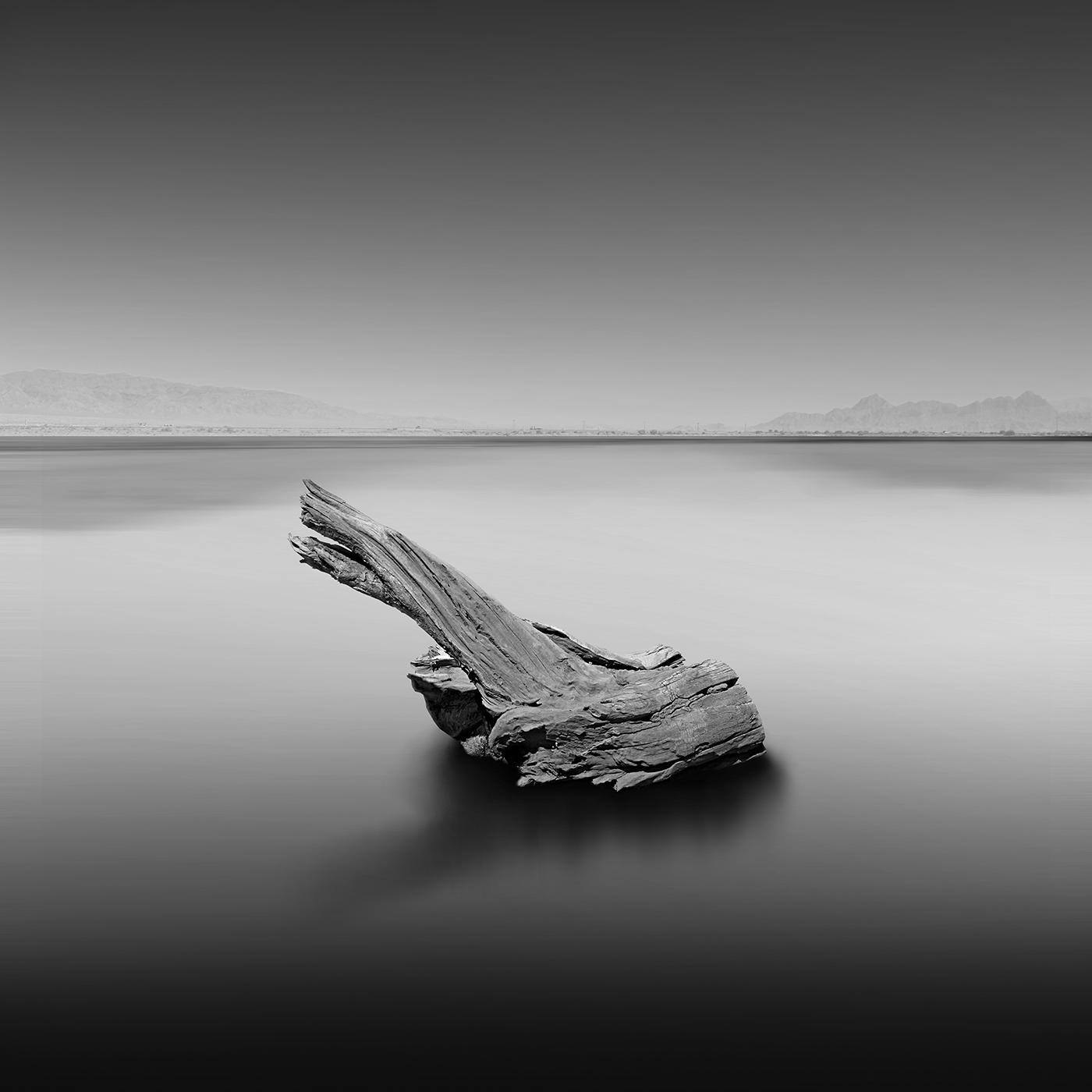 34_Seascape by Hasibe Borhani (4).jpg
