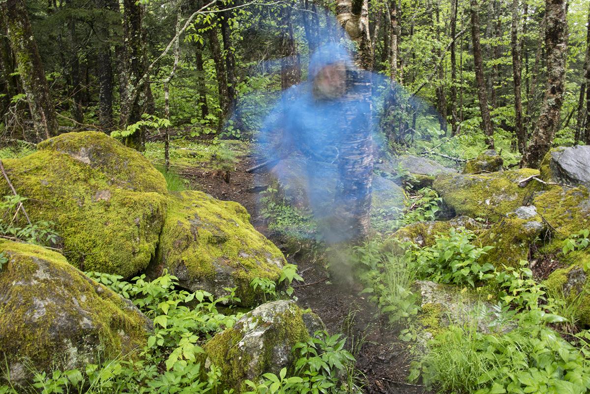 Vicki_Provost_A Walk in the Woods_Bear Pen Gap_2.jpg