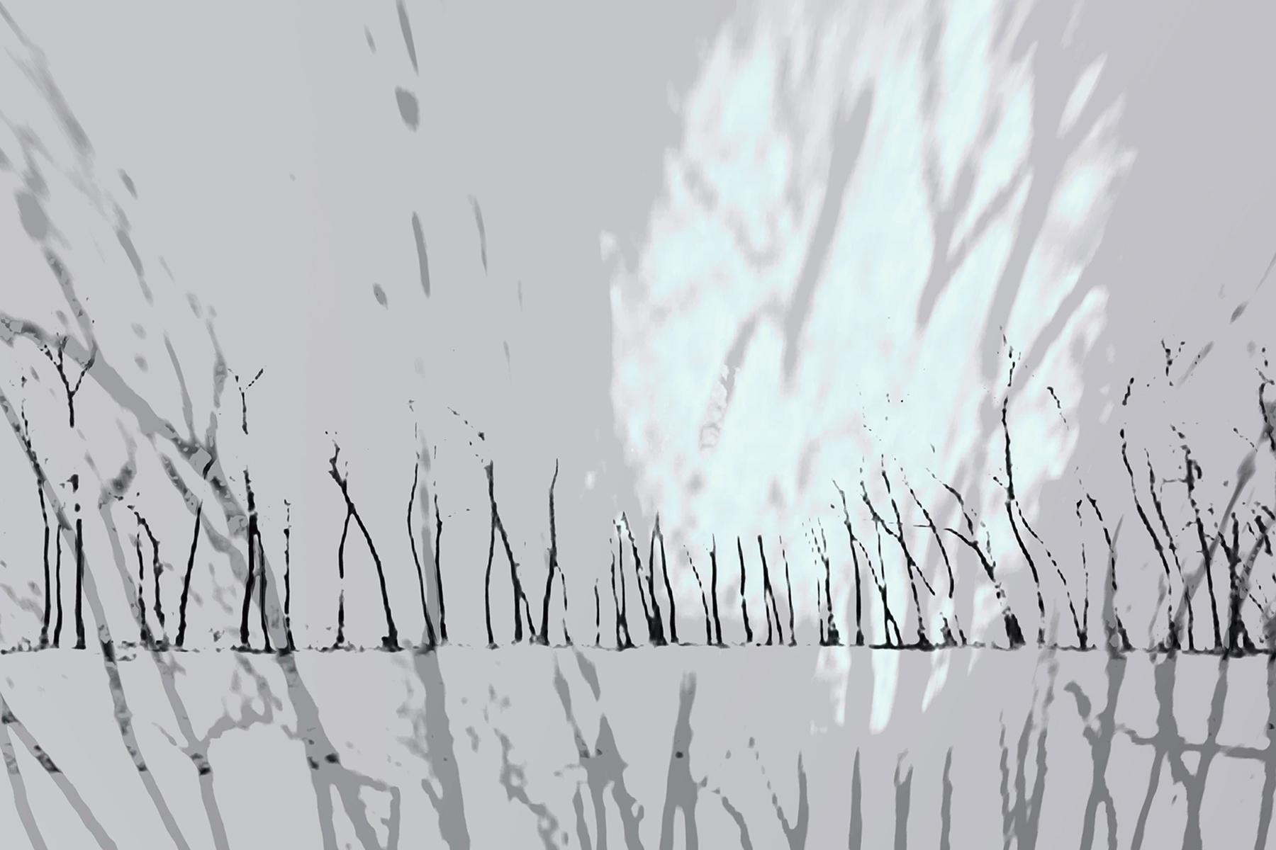 Elaine Hunter_ Saskatchewan Trees_ 3_ 3.jpg