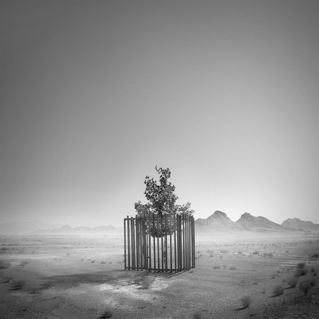 42_Tree of life by Hasibe Borhani (4).jpg