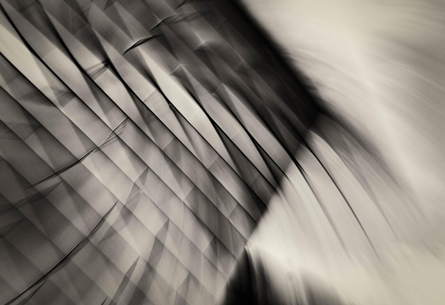 DUTCH_Bagley_Line Waves_Line Up 77_6.jpg