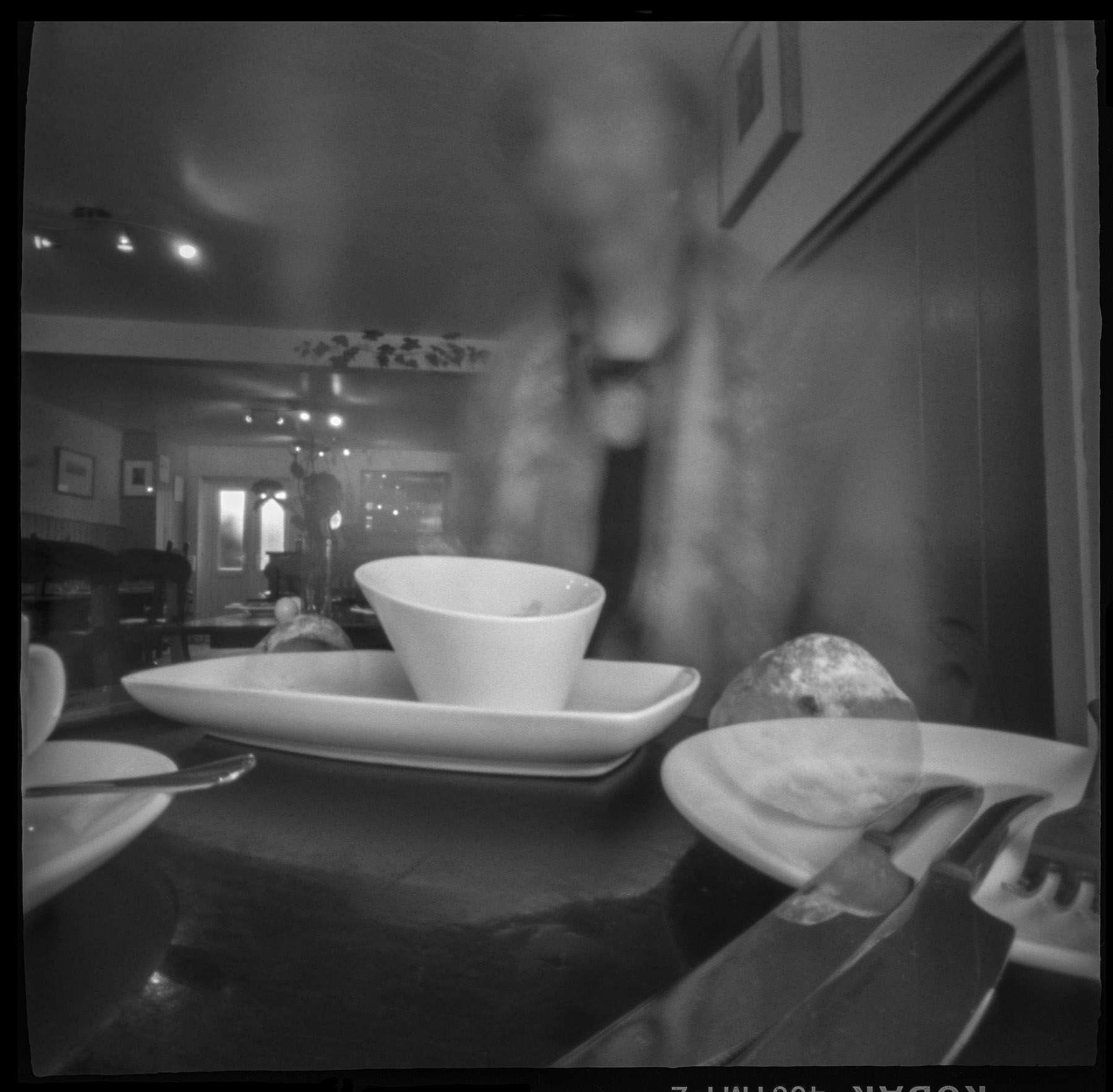 Nancy_Breslin_Pinhole Diary of Eating Out_6-6-17 Lunch at The Herb Pot Ashurst England 25seconds_1.jpg