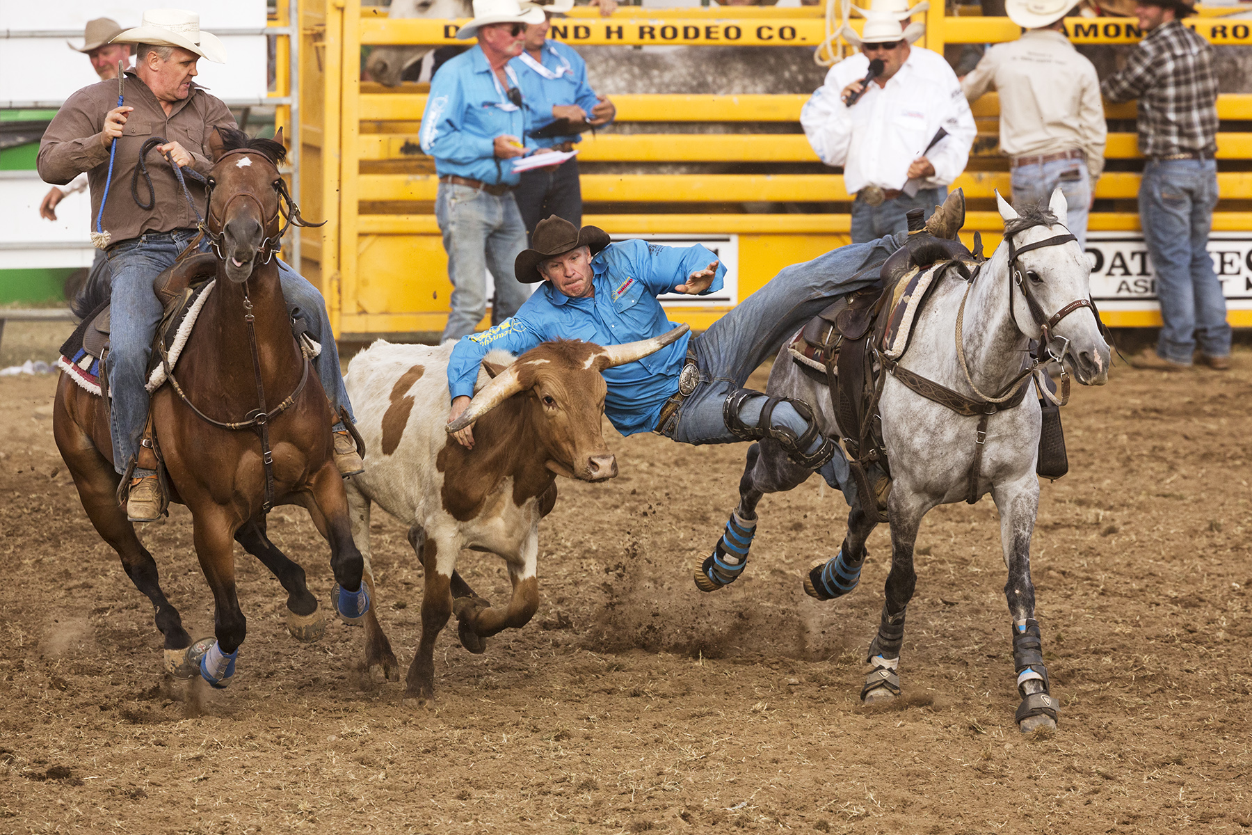 Brian_Jones_Steer Wrestling.jpg