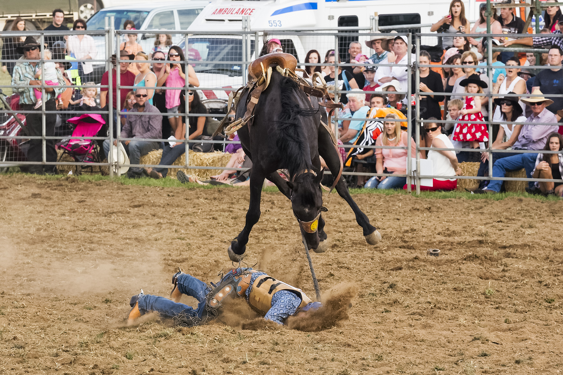 Brian_Jones_Rodeo Thrills and Spills_Face Plant_5.jpg
