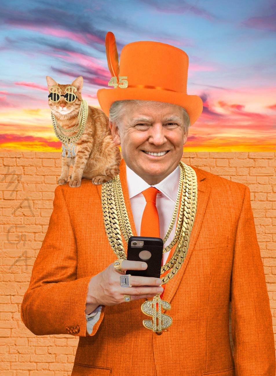 Julia_McLaurin_Donald Trump.jpg