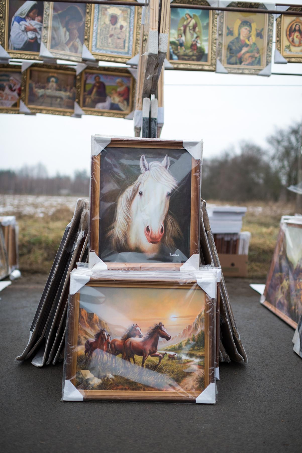 Heleen_Peeters_Horse_HorseArt_6.jpg
